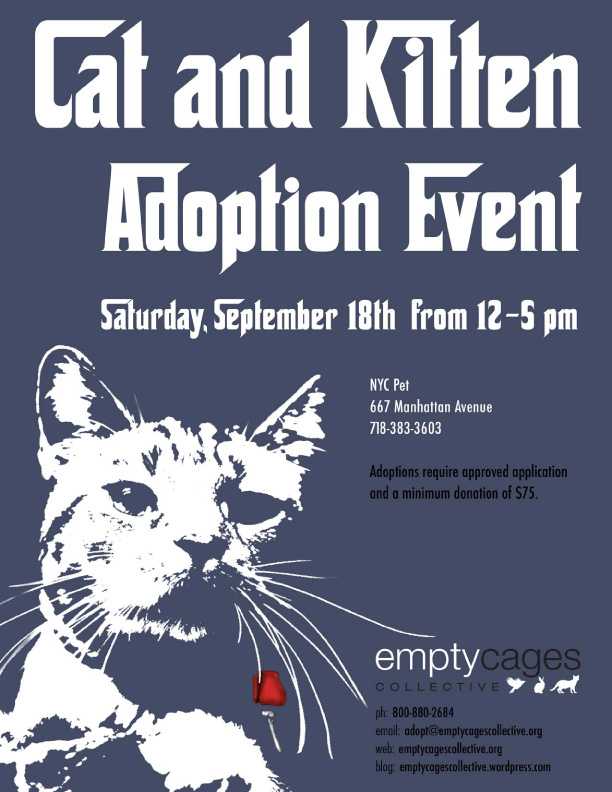 Adoptionevent10-18.jpg